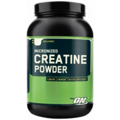 Optimum Nutrition Micronized Creatine Powder 317 g