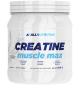 ALLNUTRITION Creatine Muscle Max 500 g
